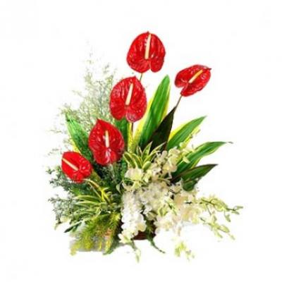 Anthurium & Orchid Arrangement