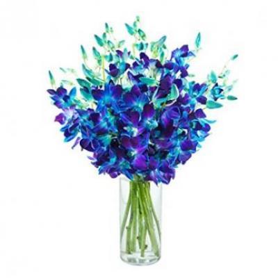 Blue Orchid Vase