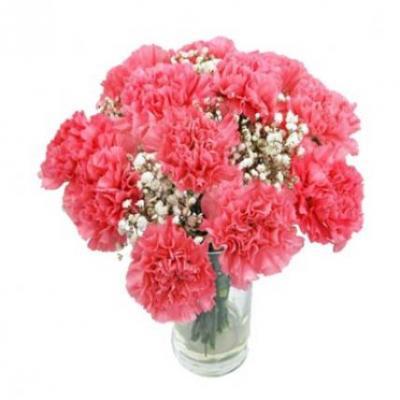 Pink Carnation Vase
