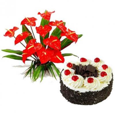 Anthurium With Black Forest Cake