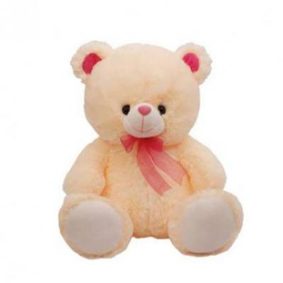 Teddy Bear 20 Inch
