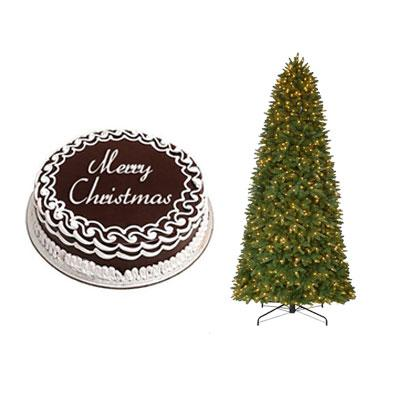 Christmas Chocolate Cake with Christmas Tree