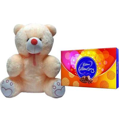 20 Inch Teddy with Celebration