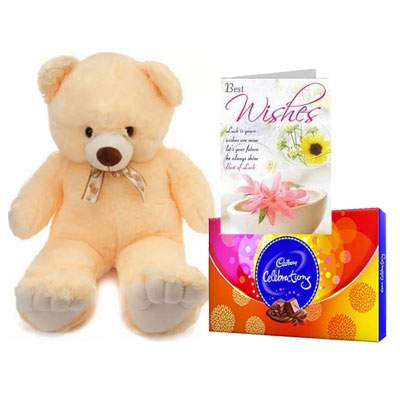24 Inch Teddy with Celebration & Card