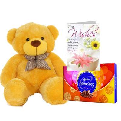 36 Inch Teddy with Celebration & Card