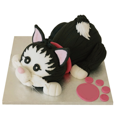 Marvelous Cat Cake