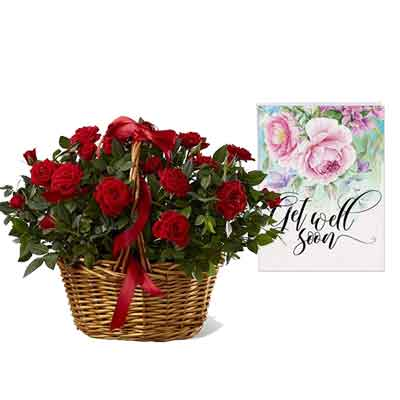Red Rose Basket With Card